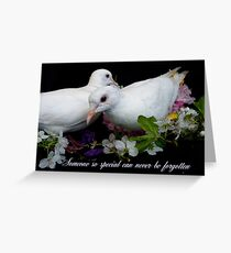 Someone So Special Can Never Be Forgotten - White Doves - NZ Greeting Card