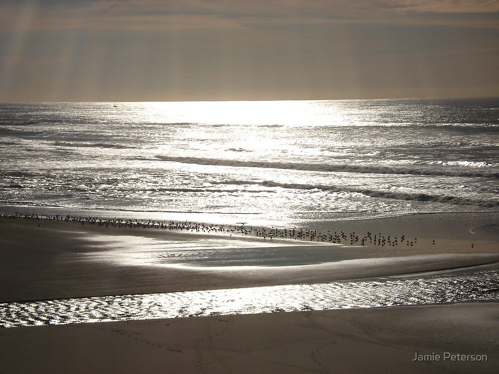 Afternoon on  Sonoma Beach by Jamie Peterson