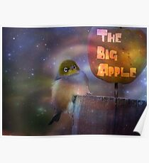The Big Apple - Silvereye - NZ Poster