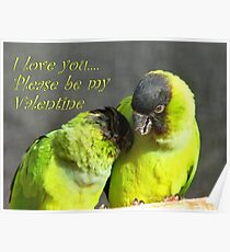 I Love You.. Please Be My Valentine.. - Nanday Conures - NZ Poster
