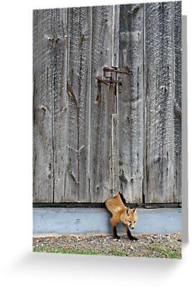 The Little Sneak by Bill Morgenstern