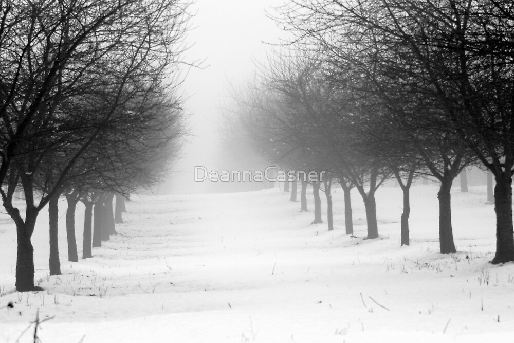 Snow in the orchard by DeannaCasner