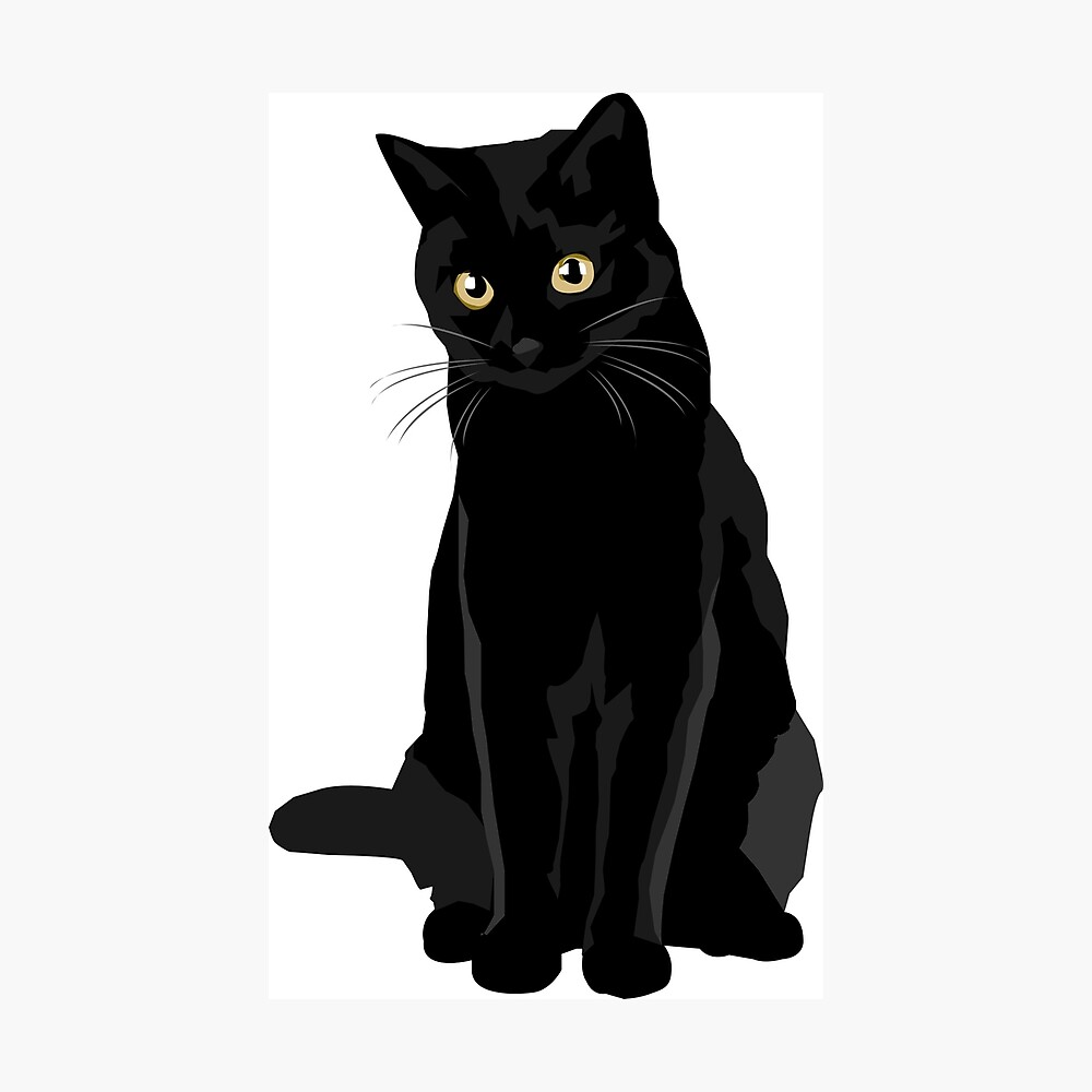 Gato negro Lámina fotográfica