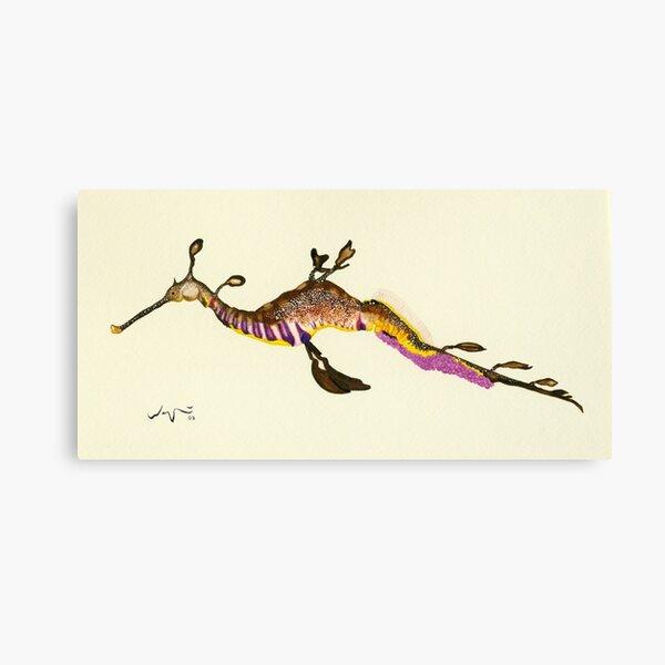 Weedy Sea Dragon Watercolour Canvas Print