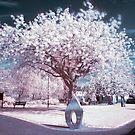 Peace Tree by Cat Perkinton