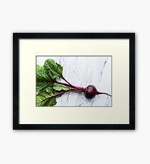 Raw organic beets Framed Print