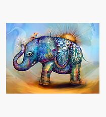 magic rainbow elephant Photographic Print