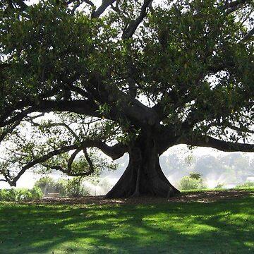 Tree by Lov34music