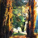 Autumn in Bright, Victoria by Roz McQuillan