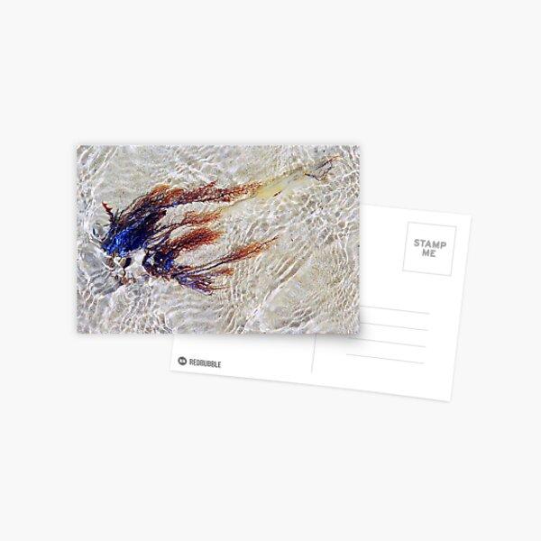 untitled Postcard