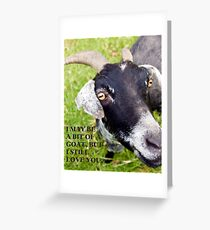 Goat Valentines Card Greeting Card