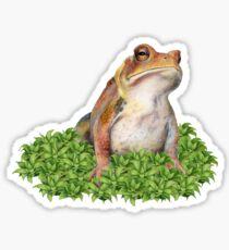 Grumpy Toad in Moss Sticker