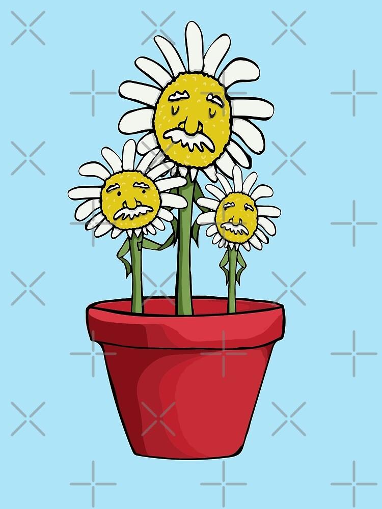 Brilliant Flowers - Growing Einstein Flowers by jitterfly