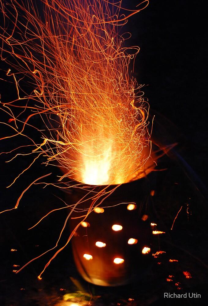 Fire fly's by Richard Utin