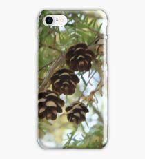 Pine cones iPhone Case/Skin