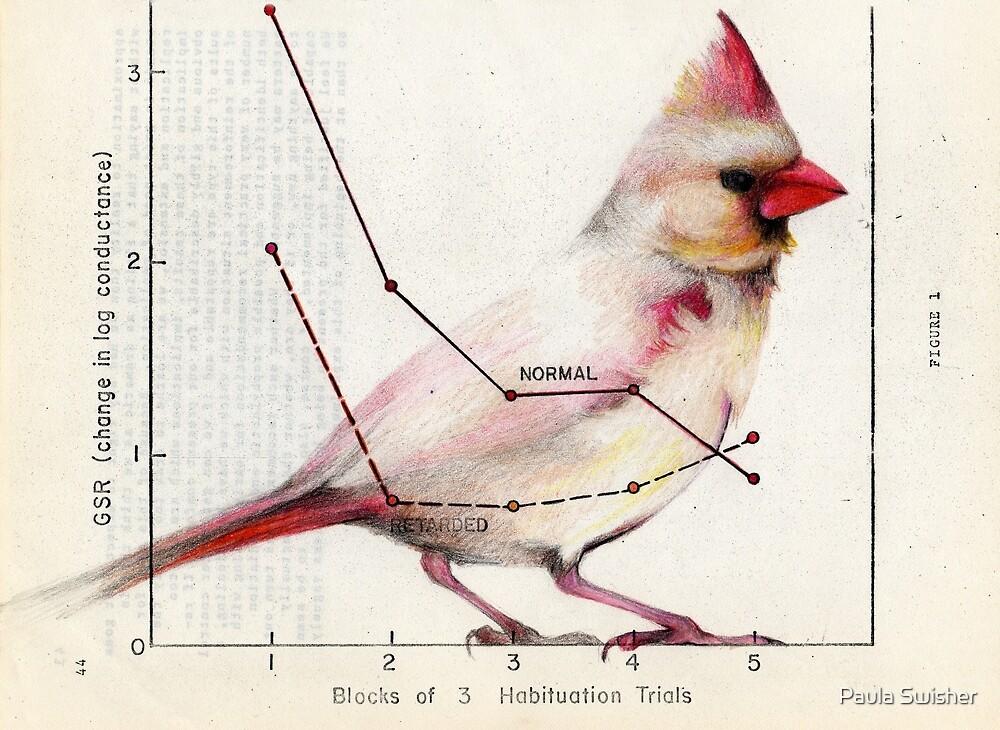 The Normal Cardinal by Paula Swisher