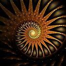 Dark Shell by Kelly Dietrich
