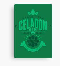 Celadon Gym Canvas Print