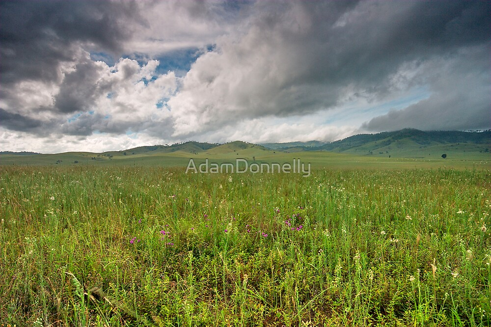 After The Rain by AdamDonnelly