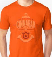 Cinnabar Gym Unisex T-Shirt