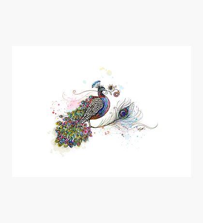 Royale Paisley Peacock Photographic Print
