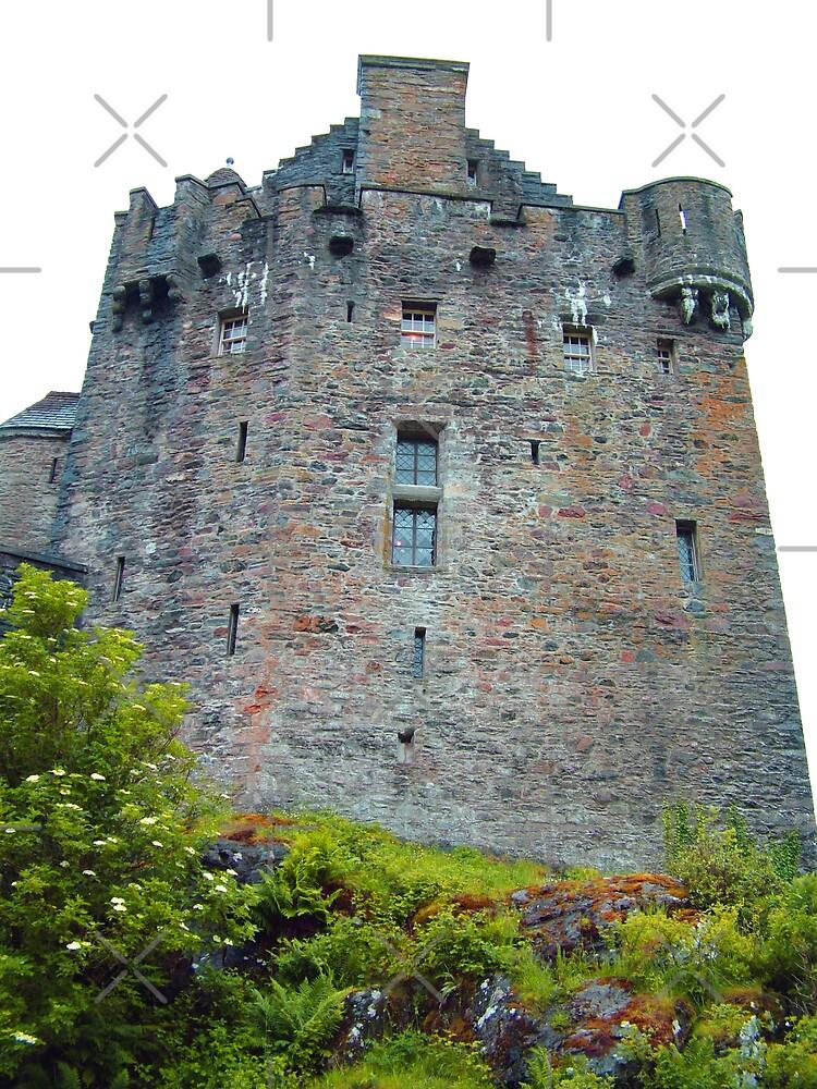 Eilean Donan Castle V by Tom Gomez