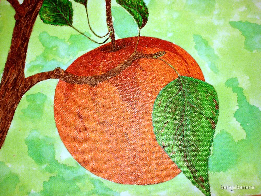 red apple by bangabanana