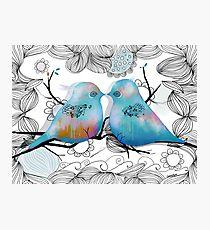 Turquoise Love Birds Photographic Print