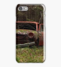Hide and Seek III iPhone Case/Skin