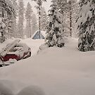 Buried in Snow by Nick Johnson