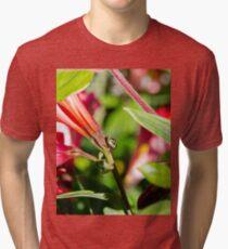 Shield bug explores it's world Tri-blend T-Shirt