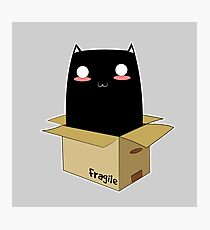 Black Cat in a Box Photographic Print