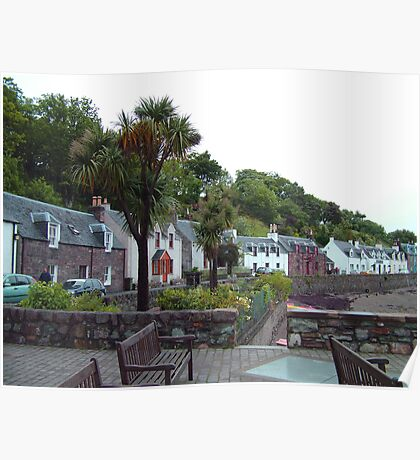 Scottish Palm Trees Poster