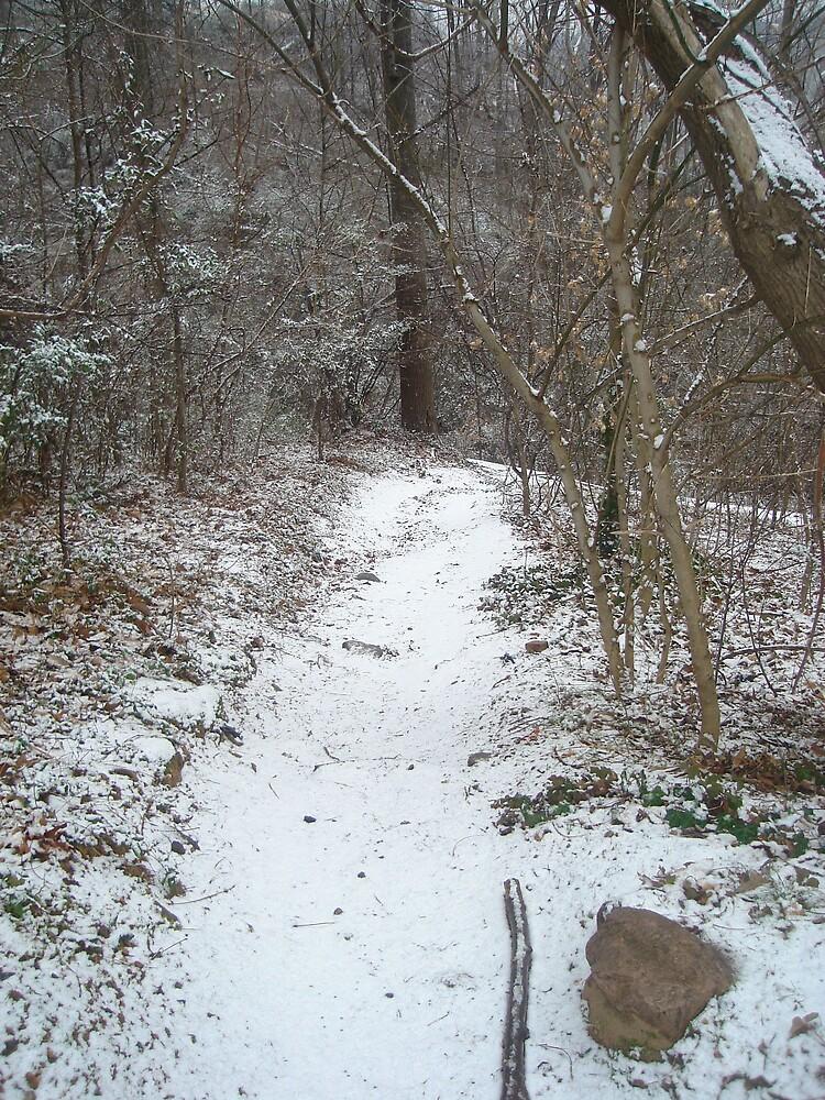 The path less taken by Tashia  Johnson