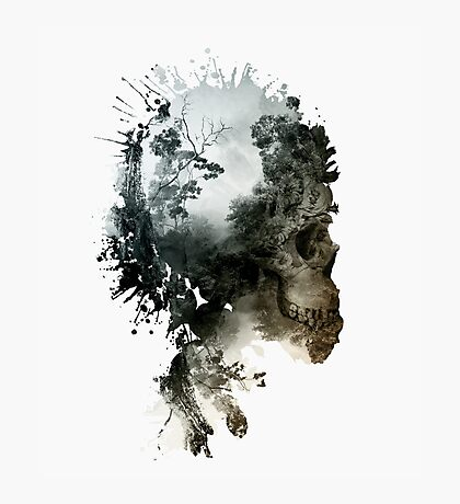 Skull - metamorphosis Photographic Print