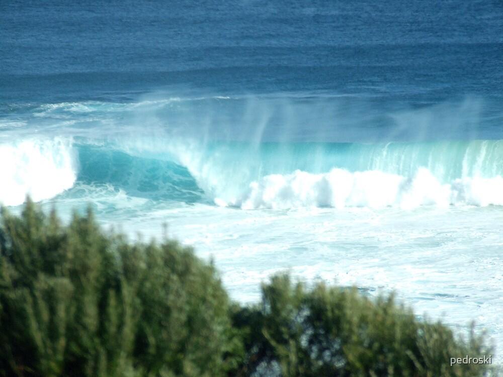 Gracetown beach surf break 003 by pedroski