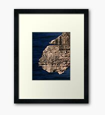 Creatures of the Punakaiki. Framed Print
