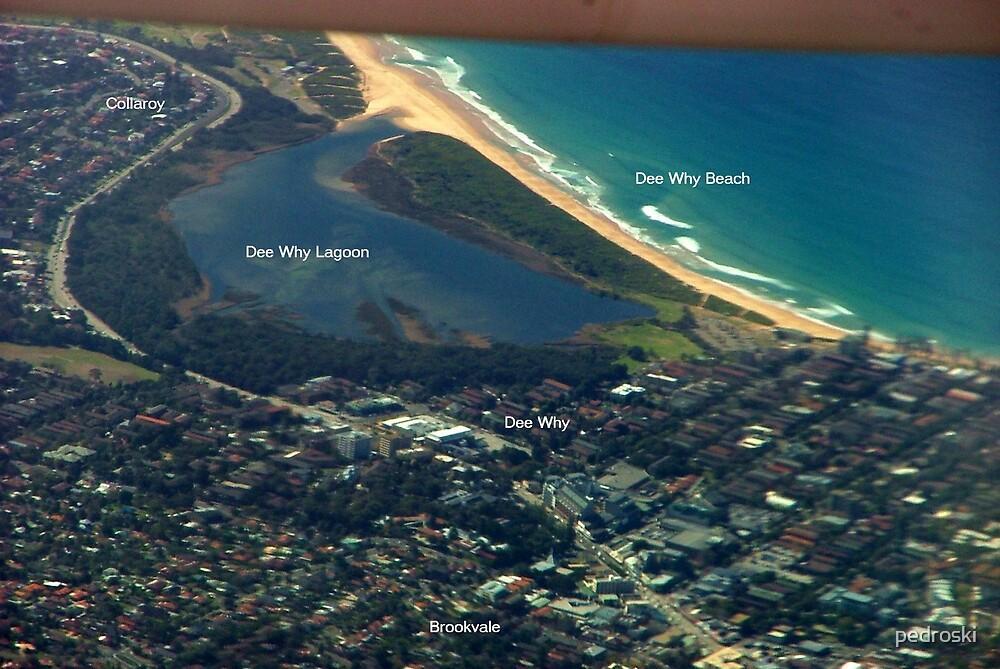 Dee Why Beach 002 by pedroski