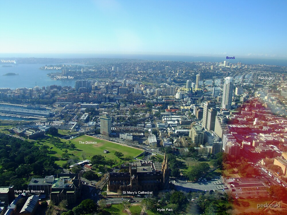 Sydney Fron Sydney Tower East View by pedroski