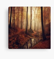 Forest creek at sunrise in fall Canvas Print