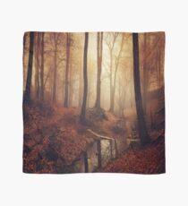 Forest creek at sunrise in fall Scarf
