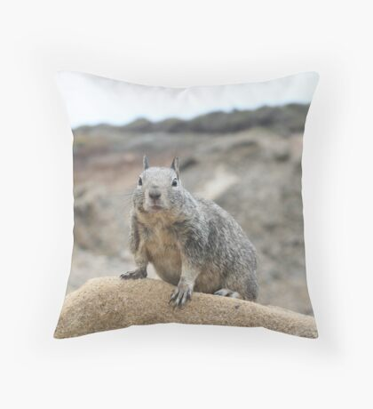 California ground squirrel Throw Pillow
