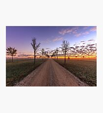 Country dirt road at sunrise Photographic Print