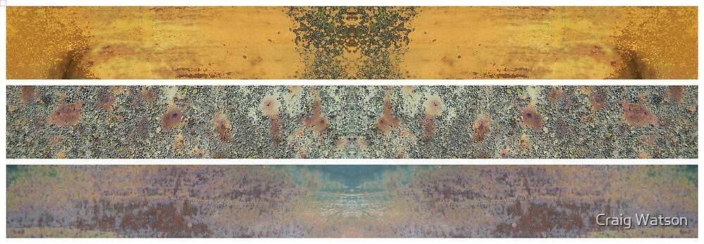 Rusty Mirrored Triptich by Craig Watson
