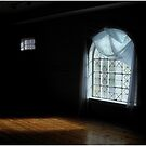 The Effects of Sunlight and Color on a Darkened Room by Wayne King