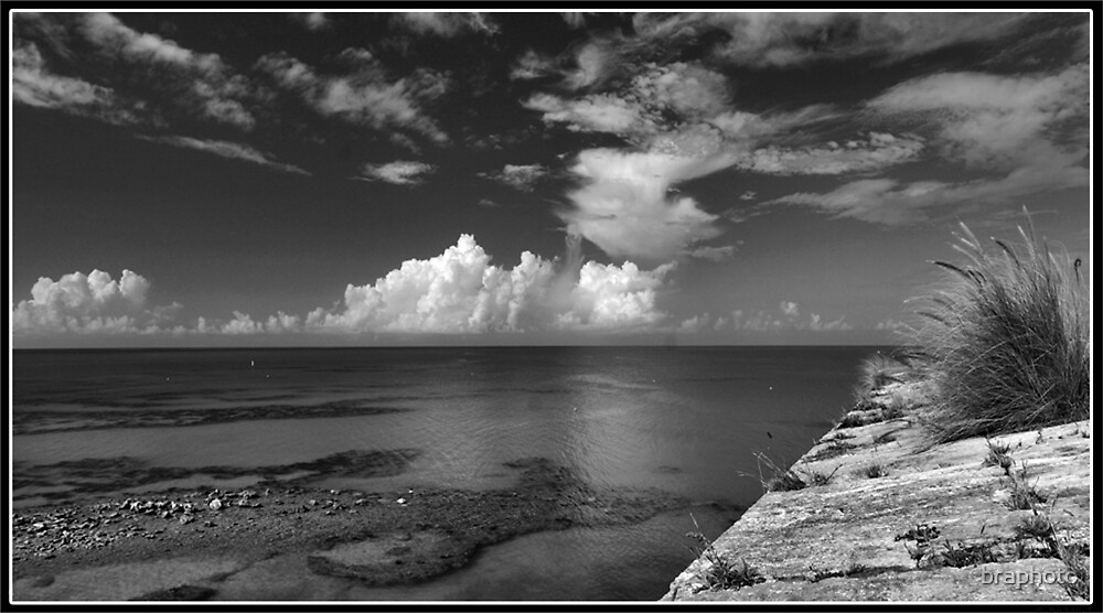 a side... by braphoto