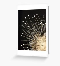 Fireworks! Greeting Card