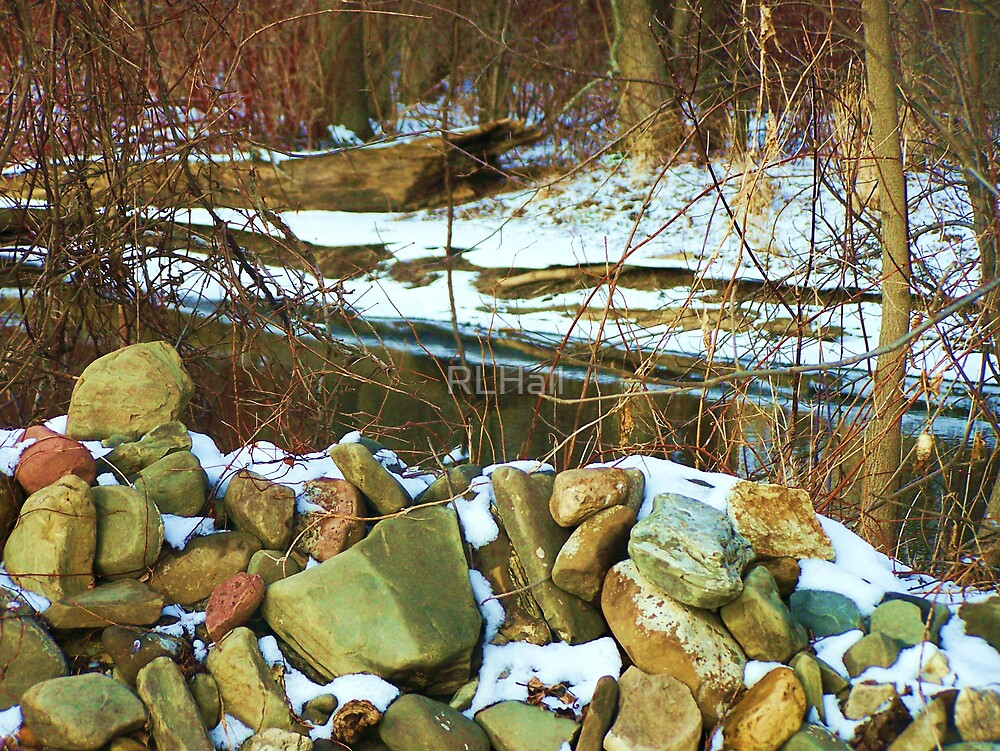 Stone Cold Creek Bank by RLHall