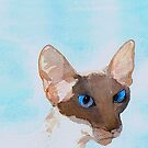 SIAMESE CAT by Hares & Critters