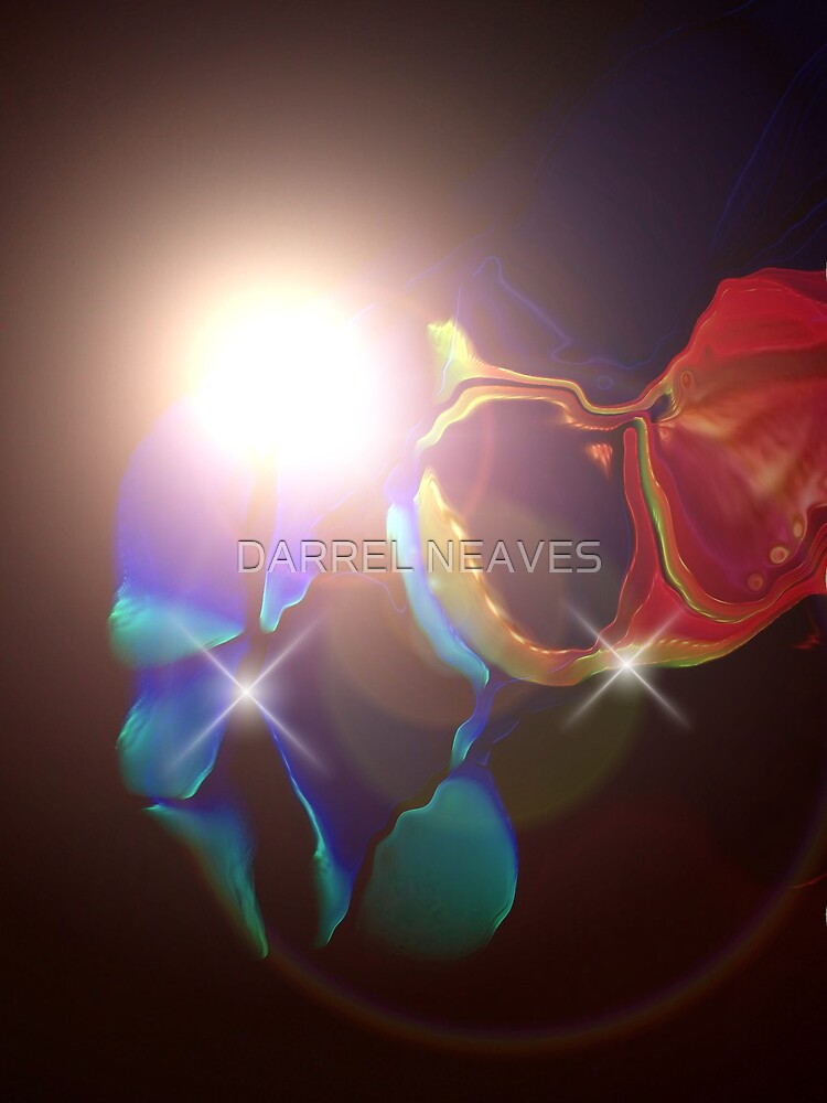 the flare by DARREL NEAVES